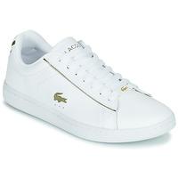 Sapatos Mulher Sapatilhas Lacoste CARNABY EVO 0721 3 SFA Branco