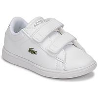 Sapatos Criança Sapatilhas Lacoste CARNABY EVO BL 21 1 SUI Branco