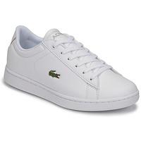 Sapatos Criança Sapatilhas Lacoste CARNABY EVO BL 21 1 SUJ Branco