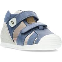 Sapatos Rapaz Sandálias Biomecanics BOYS  SANDALS 212143 GASOLINA