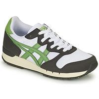 Sapatos Sapatilhas Onitsuka Tiger ALVARADO Verde / Preto / Branco