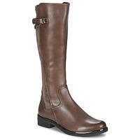 Sapatos Mulher Botas Caprice 25504-361 Toupeira