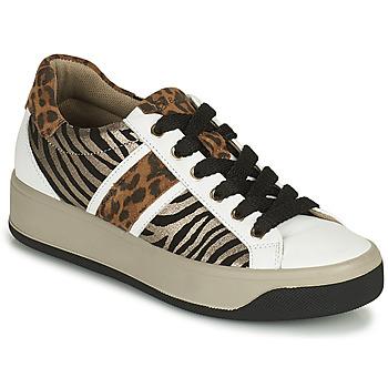 Sapatos Mulher Sapatilhas IgI&CO DONNA AVA Branco / Castanho