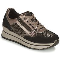 Sapatos Mulher Sapatilhas IgI&CO DONNA ANISIA Prata / Preto