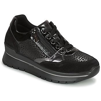 Sapatos Mulher Sapatilhas IgI&CO DONNA ANISIA Preto
