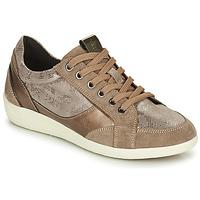Sapatos Mulher Sapatilhas Geox MYRIA Ouro