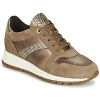 Sapatos Mulher Sapatilhas Geox TABELYA Bege / Ouro