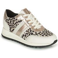 Sapatos Mulher Sapatilhas Geox TABELYA Branco / Preto / Prata