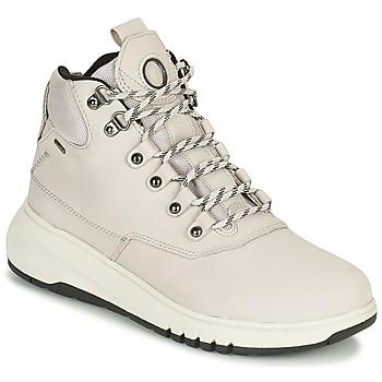 Sapatos Mulher Botas baixas Geox AERANTIS Cinza