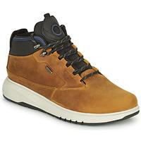 Sapatos Homem Botas baixas Geox AERANTIS Camel