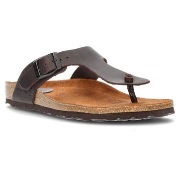 Sapatos Mulher Chinelos Interbios Sandálias  DAYIS PEREAS MOKA