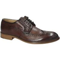 Sapatos Homem Sapatos Exton 5351 Castanho
