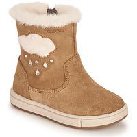 Sapatos Rapariga Botas Geox TROTTOLA Castanho
