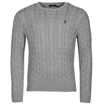 Textil Homem camisolas Polo Ralph Lauren SERINA Cinza