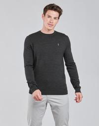 Textil Homem camisolas Polo Ralph Lauren AMIRAL Cinza