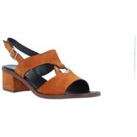 Sapatos Mulher Sandálias Plumers  Multicolor
