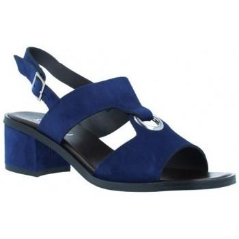 Sapatos Mulher Sandálias Plumers  Azul