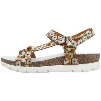 Sapatos Mulher Sandálias Panama Jack  Bege