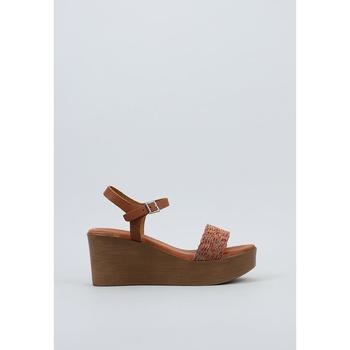 Sapatos Mulher Sandálias Sandra Fontan  Castanho