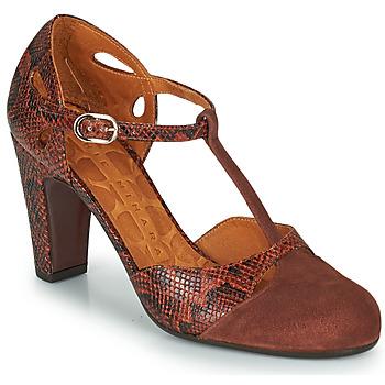 Sapatos Mulher Escarpim Chie Mihara KUNA Castanho