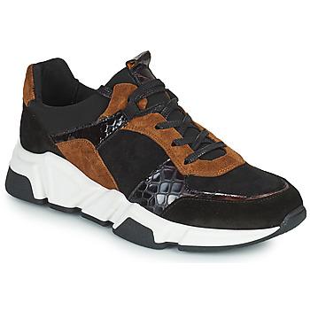 Sapatos Mulher Sapatilhas Regard KENO Preto / Castanho
