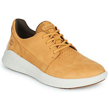 Sapatos Homem Sapatilhas Timberland BRADSTREET ULTRA LTHR OX Bege