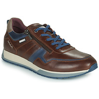Sapatos Homem Sapatilhas Pikolinos CAMBIL Castanho / Azul