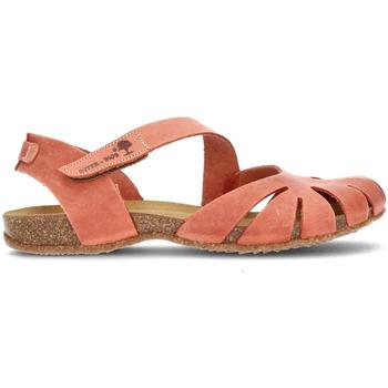 Sapatos Mulher Sandálias Interbios Sandálias  UNIVERSO TELHA