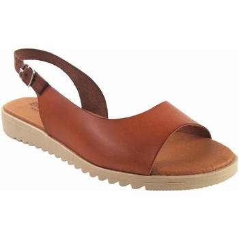 Sapatos Mulher Sandálias Eva Frutos Sandalia señora  1205 cuero Castanho