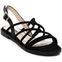 Sapatos Mulher Sandálias MTNG  Negro