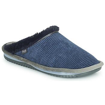 Sapatos Mulher Chinelos Scholl BRIENNE FLUFFY Marinho