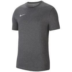 Textil Homem T-Shirt mangas curtas Nike Dri-Fit Park 20 Tee Grise
