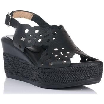 Sapatos Mulher Sandálias Zapp 7102 Preto