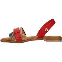 Sapatos Mulher Sandálias Gattinoni PEGAF6171WH Vermelho