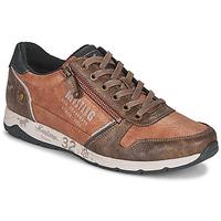 Sapatos Homem Sapatilhas Mustang BRICA Castanho