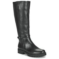 Sapatos Mulher Botas Gabor 7272757 Preto