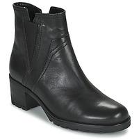 Sapatos Mulher Botins Gabor 7280417 Preto