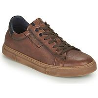 Sapatos Homem Sapatilhas Fluchos NIKO Castanho