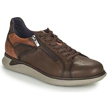 Sapatos Homem Sapatilhas Fluchos COOPER Castanho