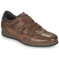 Sapatos Homem Sapatilhas Fluchos DANIEL Castanho
