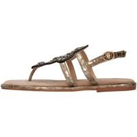 Sapatos Mulher Sandálias Alma Blue V21BL9013 Castanho