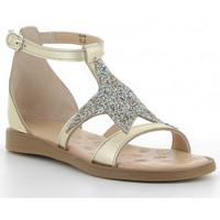 Sapatos Rapariga Sandálias Acebo's 9895-GE Doré