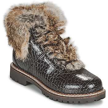 Sapatos Mulher Botas baixas Kimberfeel ASTANA Castanho