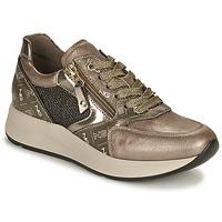 Sapatos Mulher Sapatilhas NeroGiardini  Ouro
