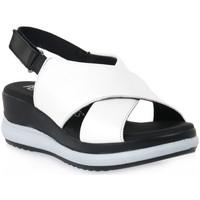 Sapatos Mulher Sandálias Pepe Menargues TRIPOLI BIANCO Bianco