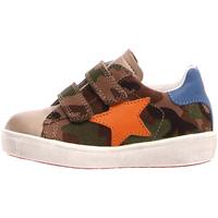 Sapatos Criança Sapatilhas Naturino 2014773 05 Castanho