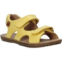 Sapatos Criança Sandálias Naturino 502708 01 Amarelo