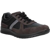 Sapatos Homem Sapatilhas Melluso U15432E Cinzento