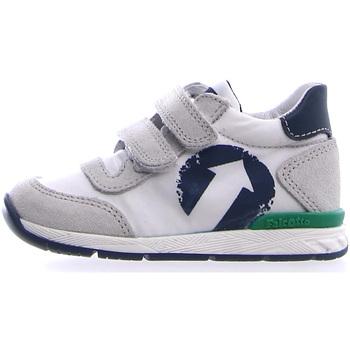 Sapatos Criança Sapatilhas Falcotto 2014941 01 Cinzento