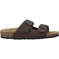 Sapatos Homem Chinelos Valleverde G51800P Castanho